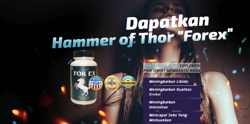 hammer-of-thor-forex-id